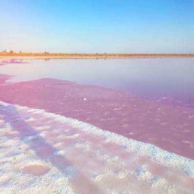 Инста Тур в Асканию-Нову + Розовое озеро из Днепра