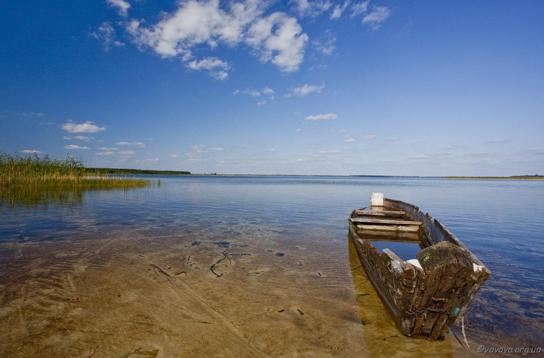 Картинка поездка на Шацкие озера