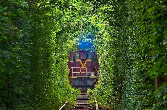 Картинка тур в Тоннель любви