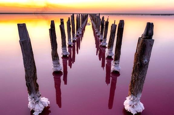 Фото поездка на Розовое озеро в Геническе из Днепра