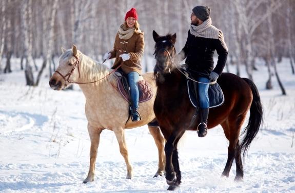 Картинка прогулка на лошадях дланью пары