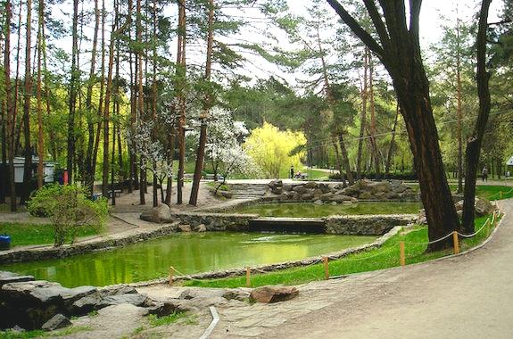 Фото парк Сосновый бор в Черкассах