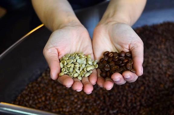 Фото поездка на фабрику кофе