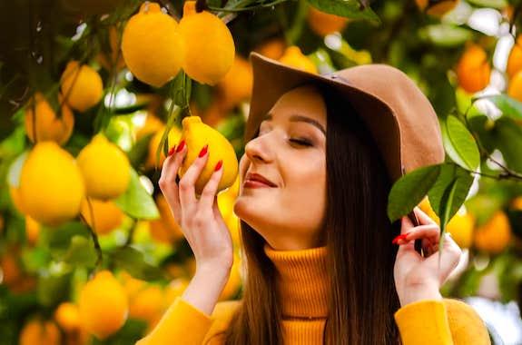 Фото поездка в лимонарий