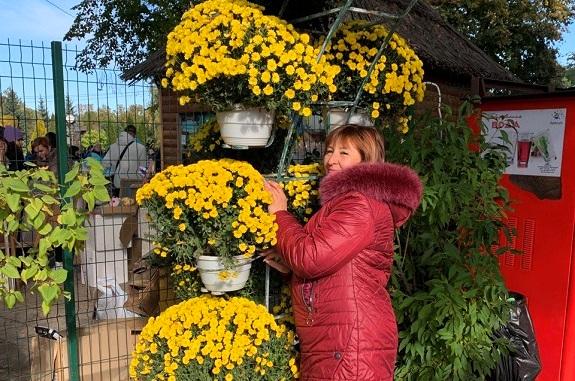 Картинка экскурсия в Харьков из Днепропетровска на бал хризантем