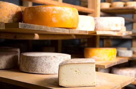 Фото экоферма сыров
