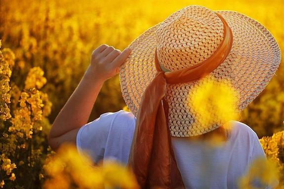 Картинка поездка на фотосессию в поле с рапсом из Днепра