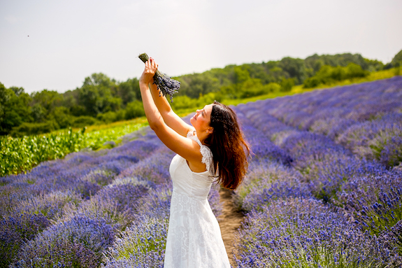 Картинка фотосессия на поле с лавандой из Днепра