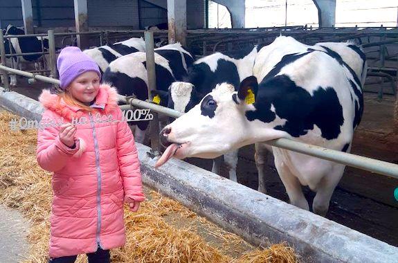 Картинка поездка на молочную ферму из Харькова