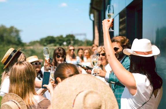 Картинка поездка в винный завод Шабо