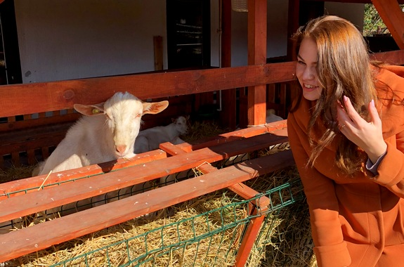 Картинка сборные экскурсии на ферму Святогорская коза