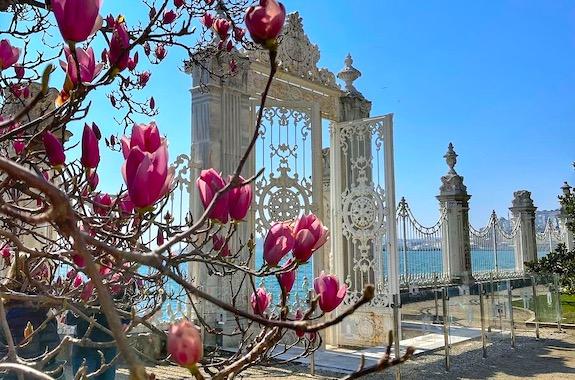 Фото поездка в дворец Долмабахче