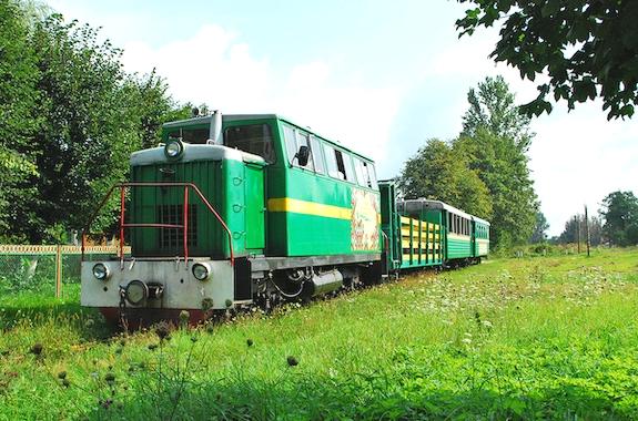 Картинка поездка на узкоколейной железной дороге