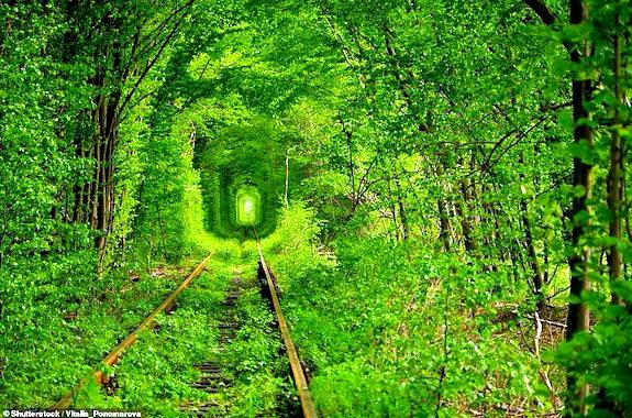 Картинка поездка в тоннель любви