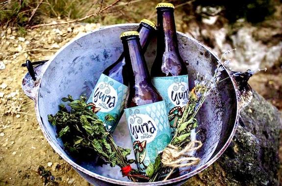 Картинка дегустация пива в Карпатах